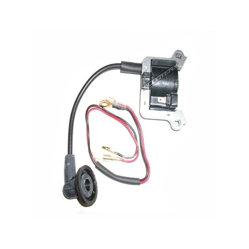 ignition coil 49