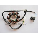 Ignition Coil 6 Stator  [1213]
